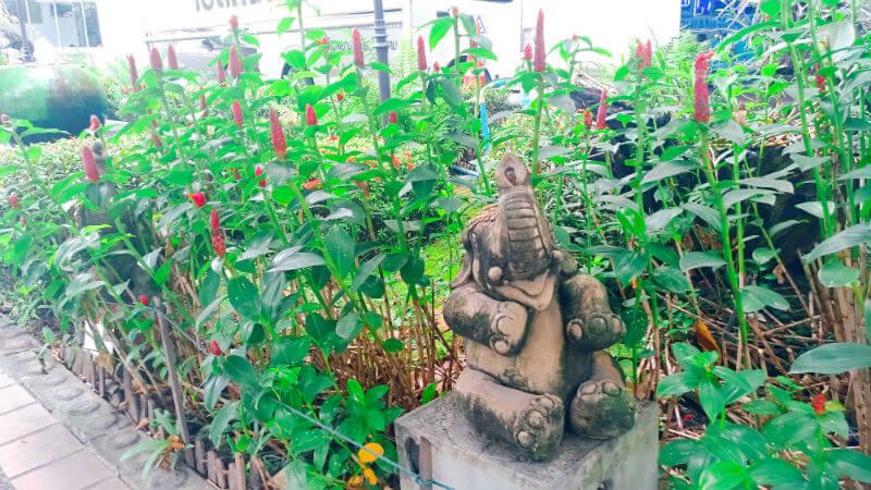 6・7・8月のチェンマイの天気・雨の様子